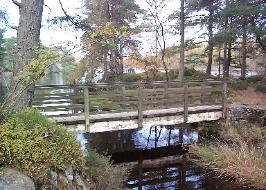 Bridge over a creek with trees around